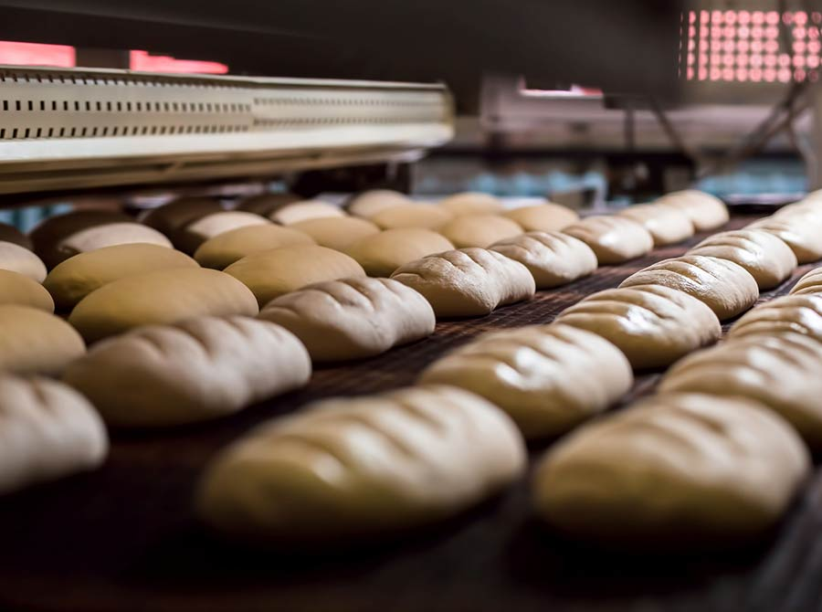 Machinery and industrial equipment for bakery